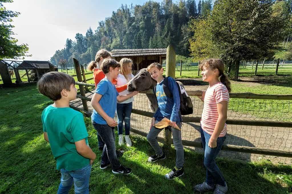 Kinder im Streichelzoo beim Ausflug mit Kindern in Kärntens beliebtesten Tierpark!
