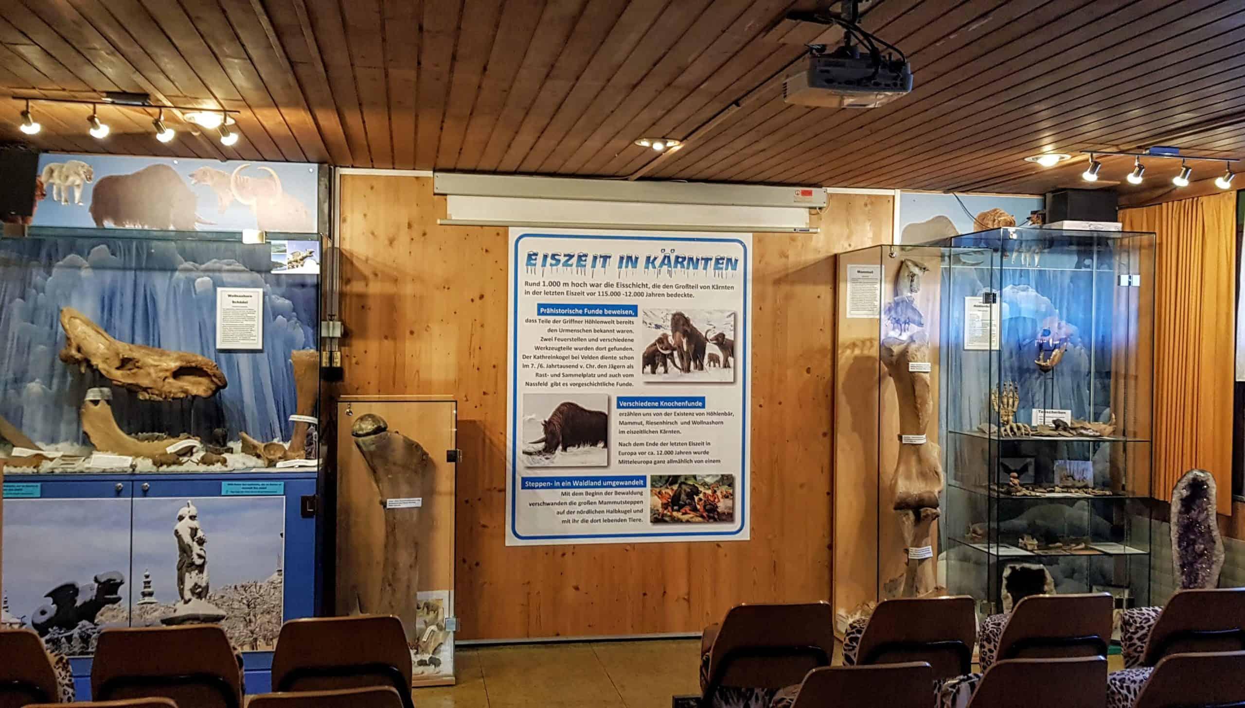 Eiszeit Ausstellung in Klagenfurt Reptilienzoo Happ