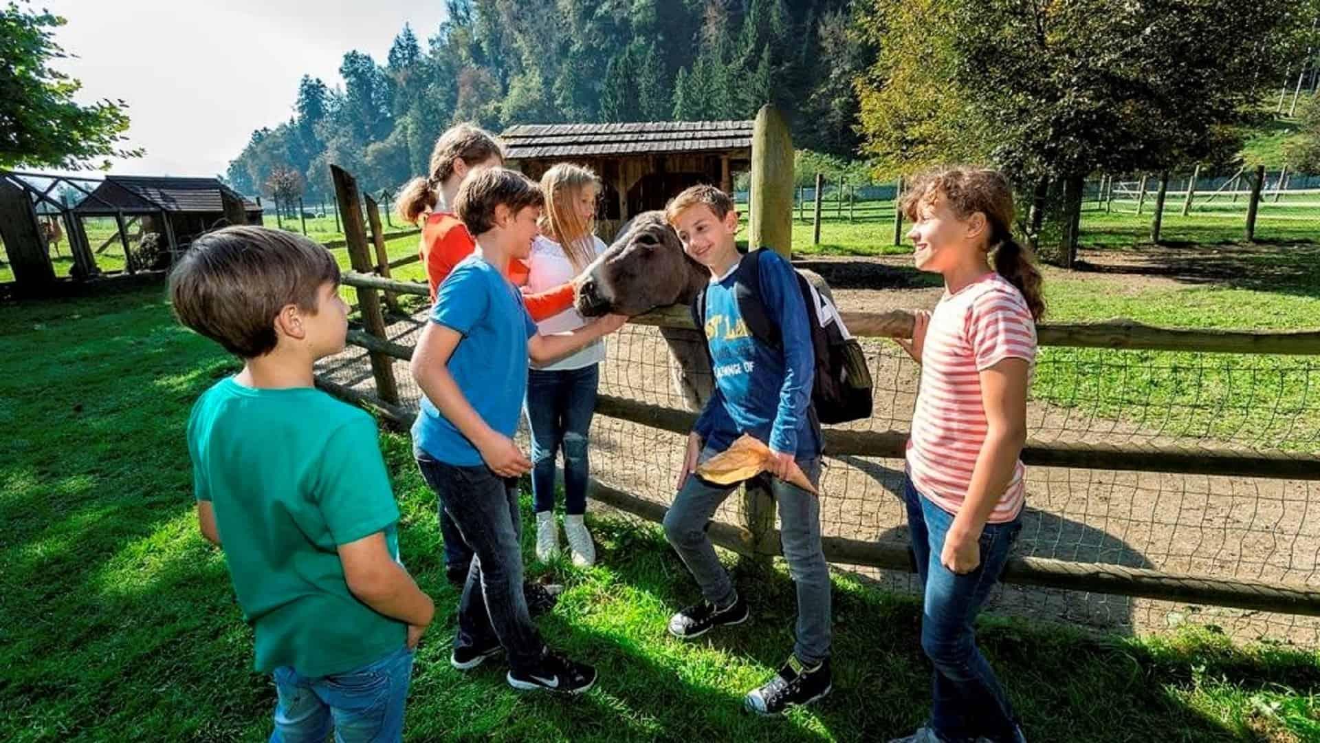 Tierpark Rosegg Rosental Velden Wörthersee Kärnten TOP Ausflugsziele