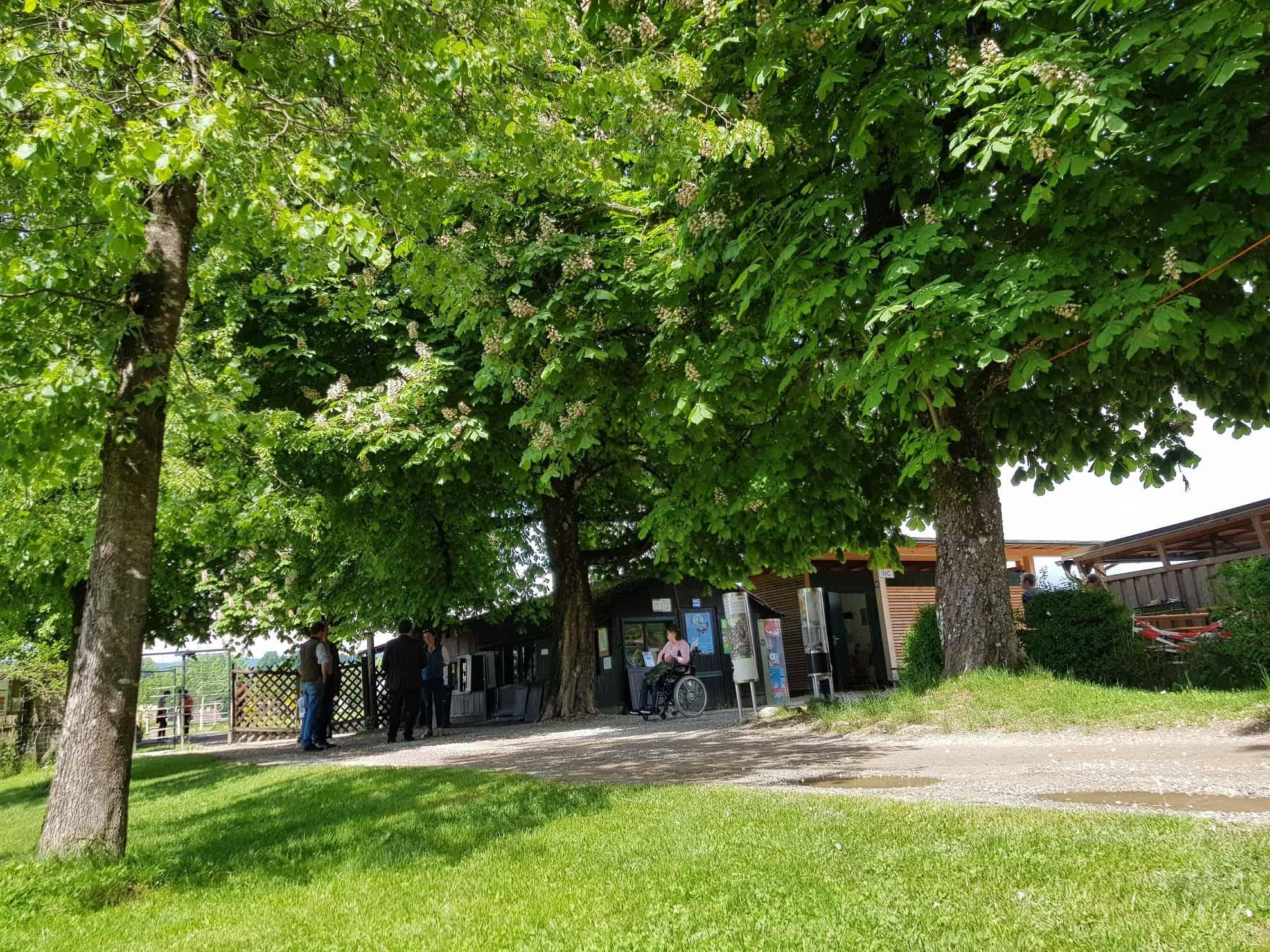 Eingangsbereich Ausflug Tierpark Rosegg Kärnten
