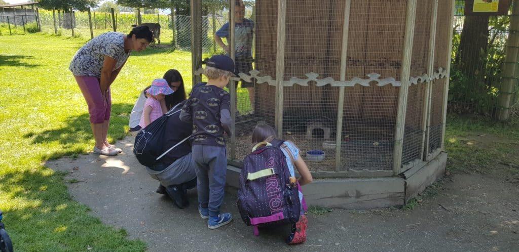Familie im Streichelzoo Tierpark Rosegg bei Velden am Wörthersee