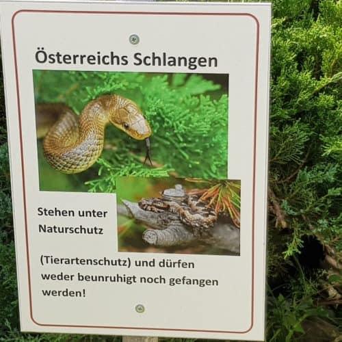 heimische Schlangen Reptilienzoo Happ Familienausflugsziel Kärnten - Schautafel.