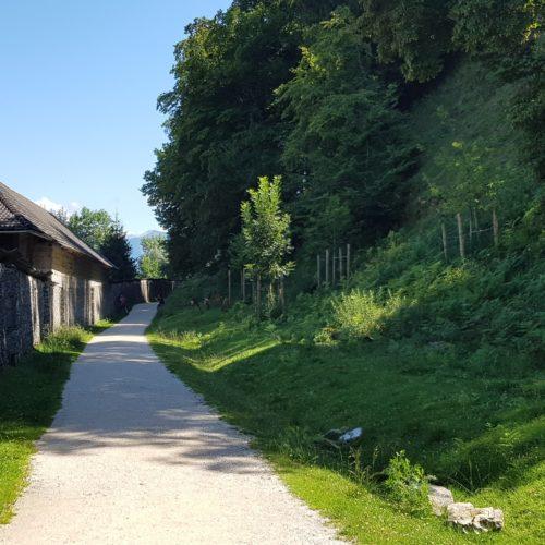 Historische Mauern schöner kinderfreundlicher Weg durch Tierpark Rosegg Kärnten