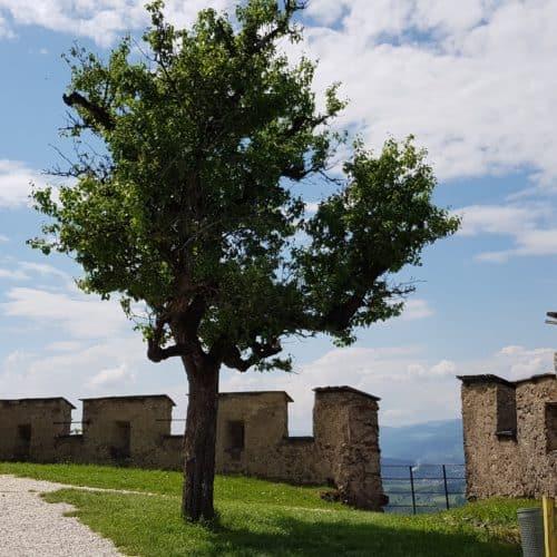 Ausflug auf die Burg Hochosterwitz - Aufgang auf familienfreundliche Burg in Kärnten.