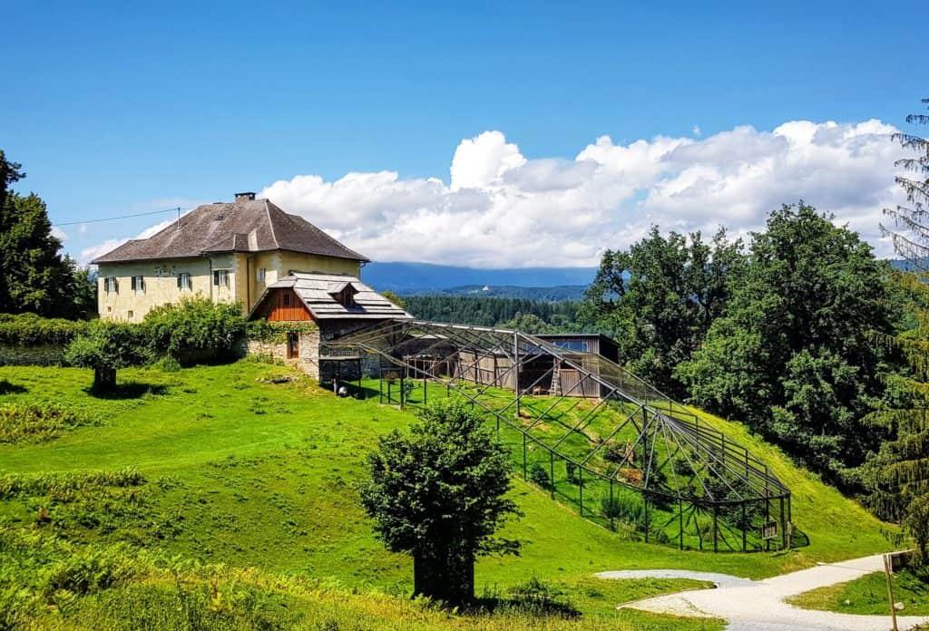 Familie Ausflug Wanderung Tierpark Rosegg Kärnten Card