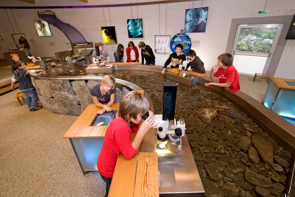 Kinder forschen im Besucherzentrum Mallnitz Regenwetter Ausflug Kärnten