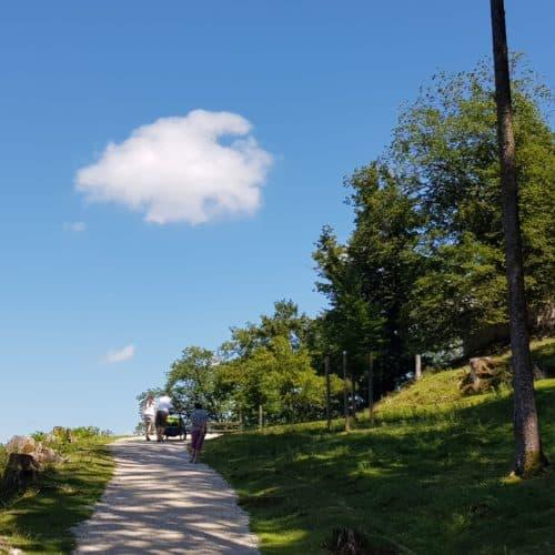 Kinderwagenfreundliche Wanderung Kärnten Ausflug Tierpark Schloss Rosegg