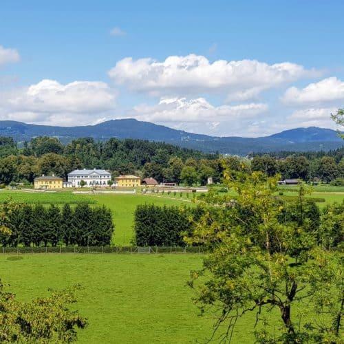 Schöner Weg durch Tierpark Rosegg mit Blick auf das Schloss Rosegg