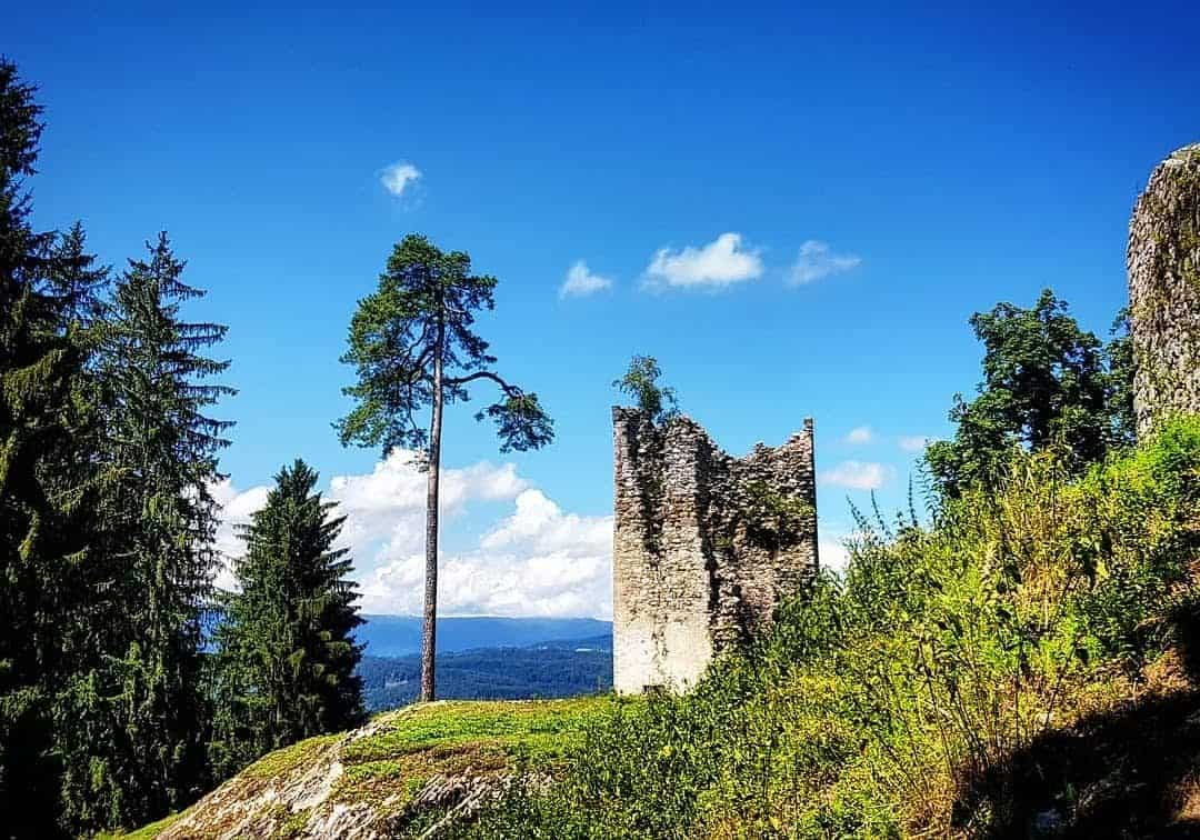 Ruine Rosegg im Tierpark Rosegg - Sehenswürdigkeiten in Kärnten, Österreich