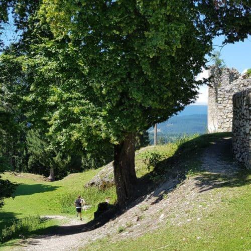 Kind läuft am Weg durch familienfreundlichen Tierpark Rosegg in Kärnten