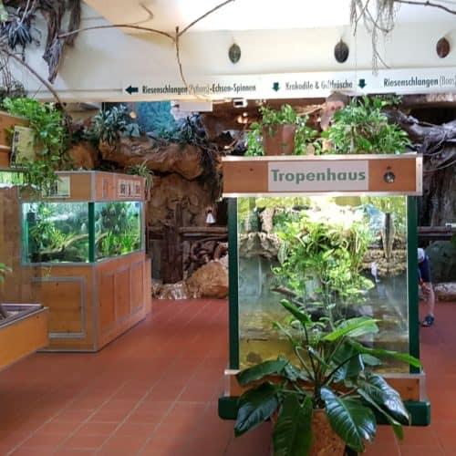 Terrarien im familienfreundlichen Reptilienzoo Happ Klagenfurt Kärnten