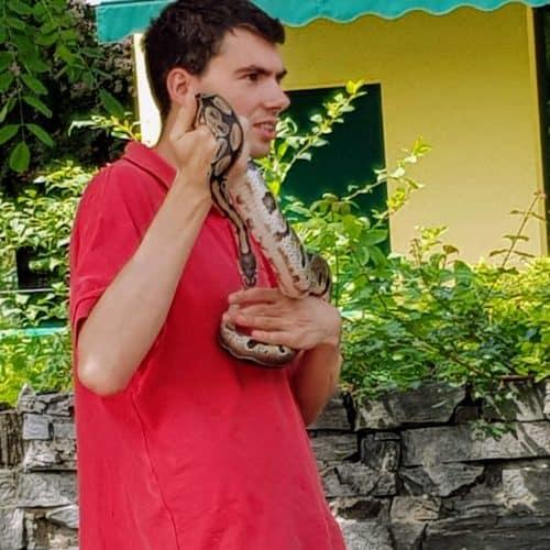Mitarbeiter mit Schlange bei Vortrag über Schlangen für Familien im Reptilienzoo Happ in Klagenfurt Kärnten