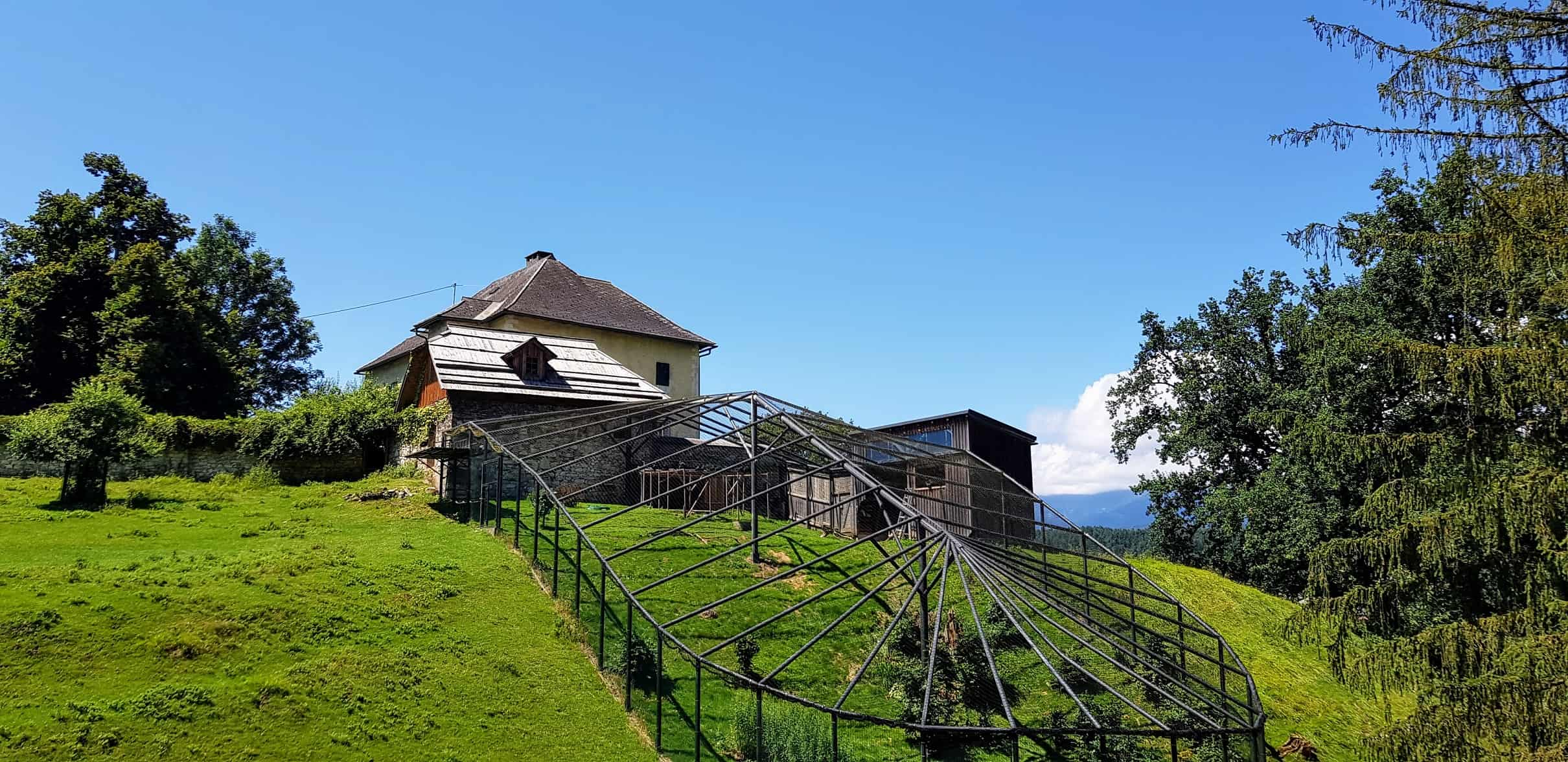 Waldrapp-Gehege Tierschutz Projekt Tierpark Rosegg