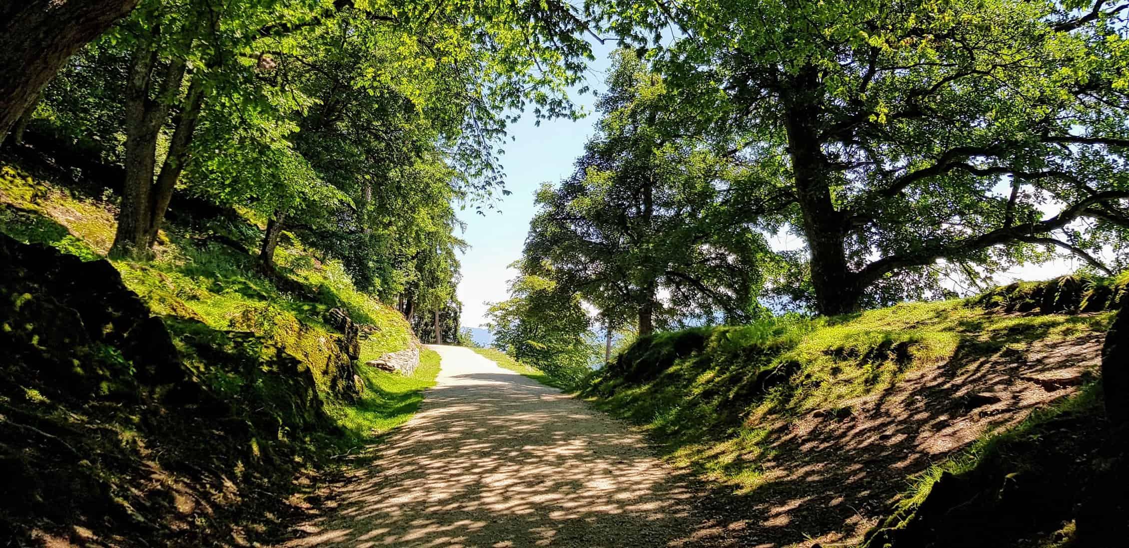 Wanderweg durch Ausflugsziel Tierpark Rosegg in Kärnten