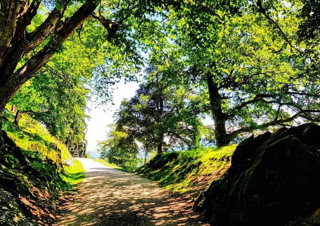 Schöner Wanderweg an heißen Tagen durch Tierpark Rosegg Ausflugsziele in Kärnten