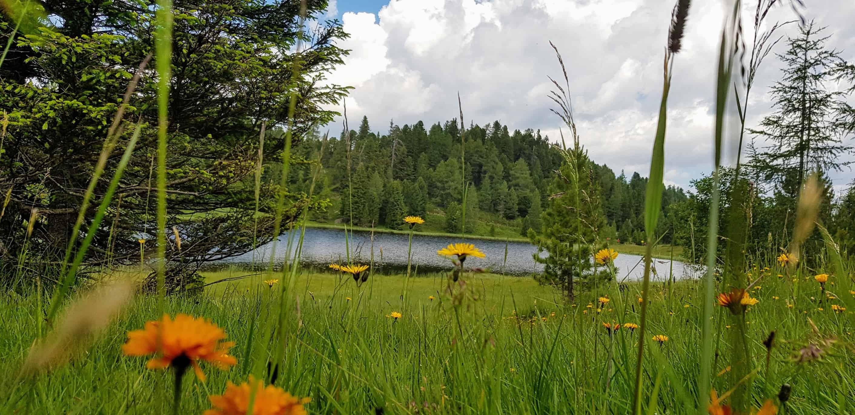 Schwarzsee - Bergsee auf der Turracher Höhe in Kärnten, Ausflugstipp in Österreich