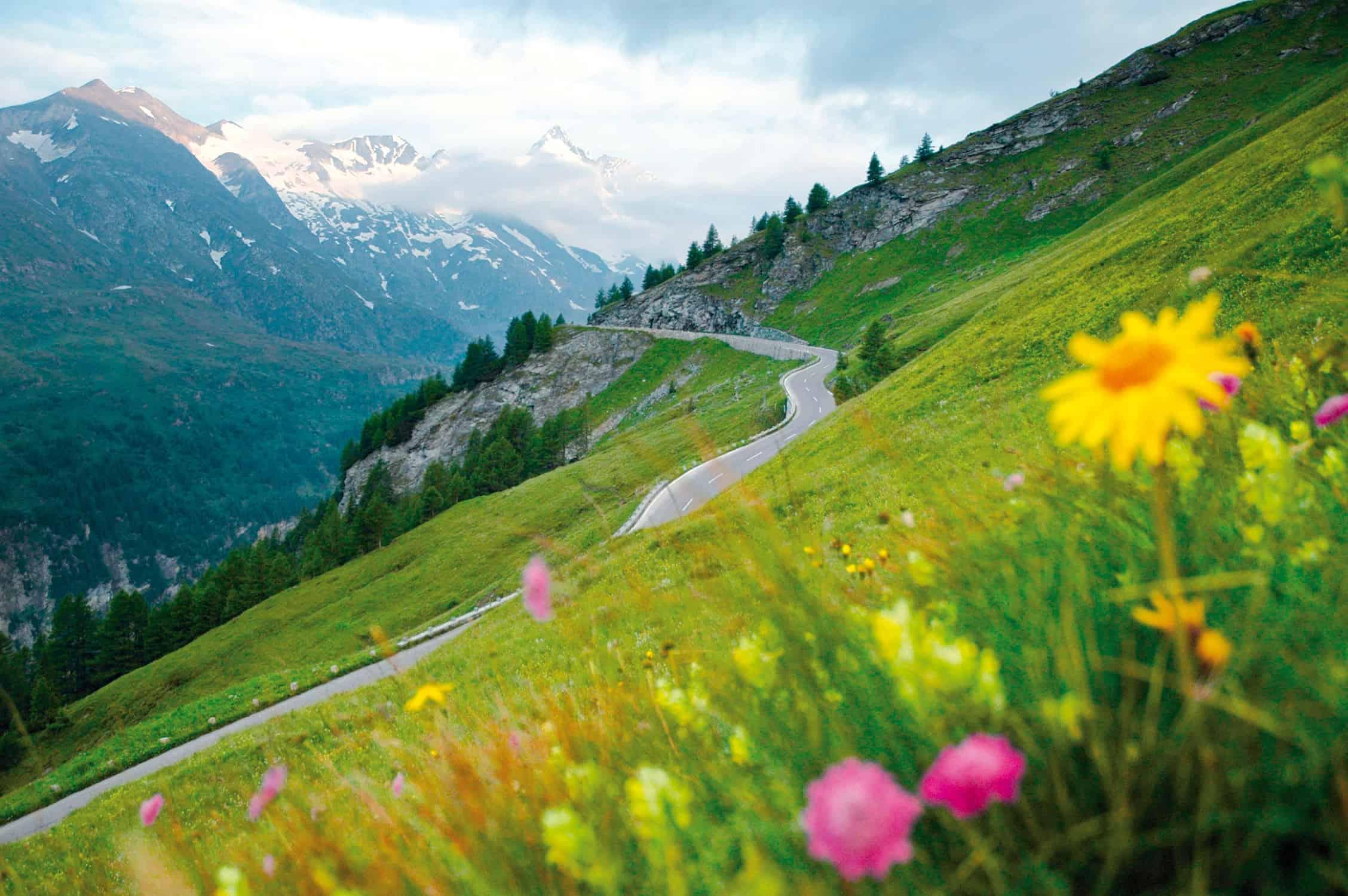 Sommer Ausflugsziel Großglockner Hochalpenstraße Naturlandschaft