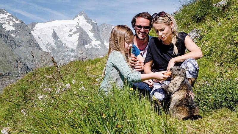 Familie füttert Murmeltier im Nationalpark Hoche Tauern vor dem Großglockner. Familienfreundliche Großglockner Hochalpenstraße
