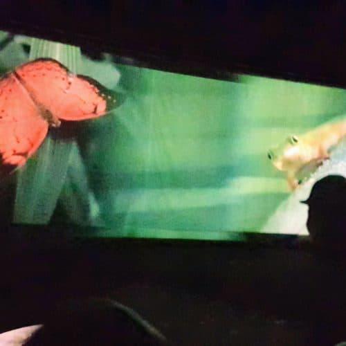 Führungen mit Multimedia im Bergwerk Terra Mystica - Ausflugsziel in Villach
