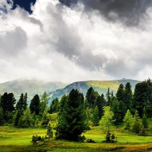 Wandern nach Regenwetter bei Ausflug auf die Turracher Höhe in Kärnten, Österreich. Berge, Wolken, Wiesen und Bäume.