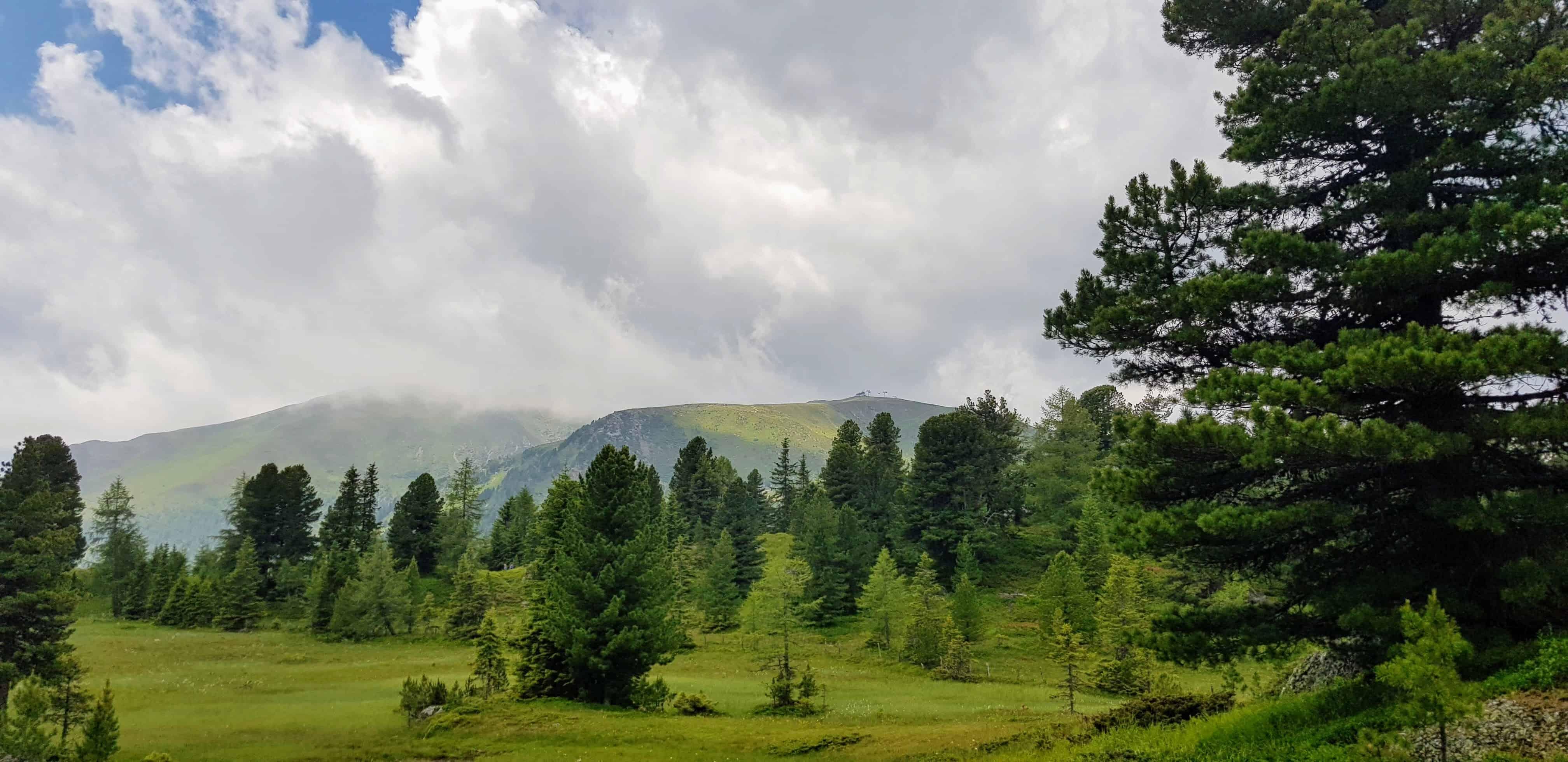 Ausflug und Wanderung bei Regenwetter auf der Turracher Höhe. Landschaft Wanderregion mit Nockbergen, Wiesen und Bäumen.