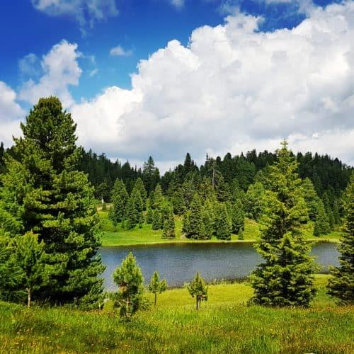 Schwarzsee auf der Turracher Höhe - Wanderung 3 Seenrunde - in den Nockbergen in Kärnten - Österreich