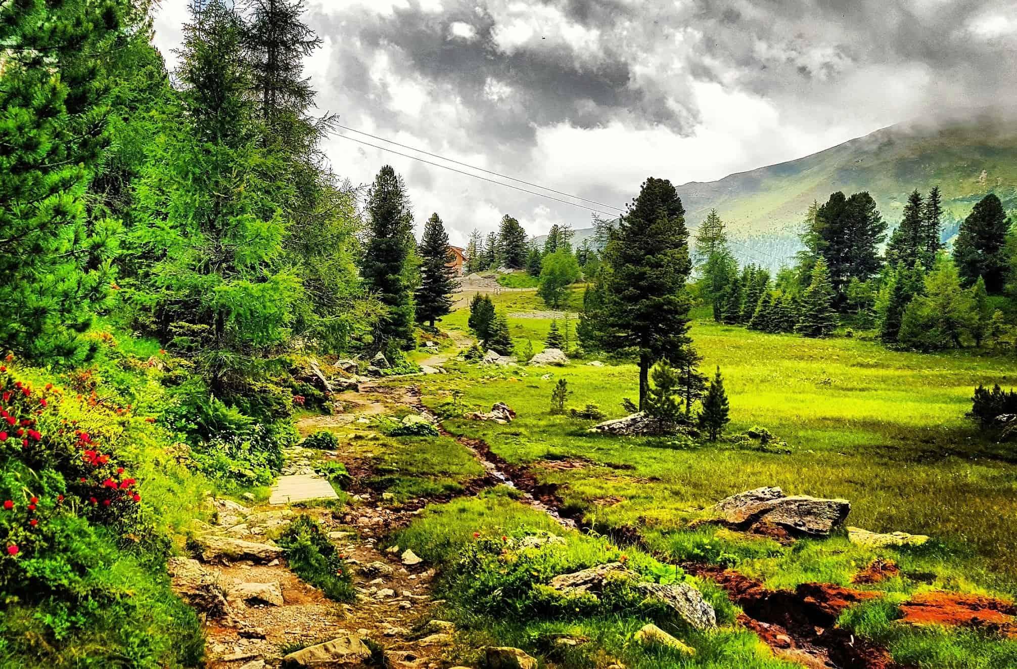 schöner Wanderweg in den Nockbergen - Ausflugstipp bei Regenwetter in Kärnten auf die Turracher Höhe - Österreich