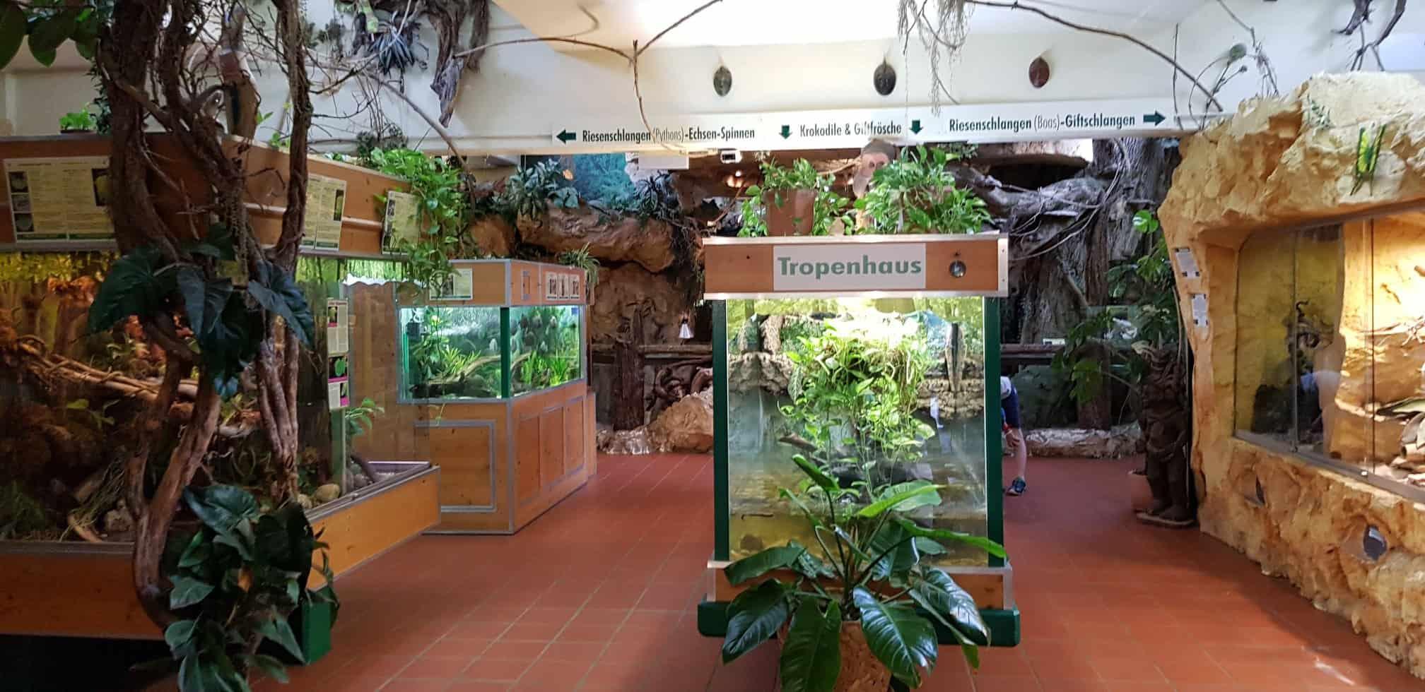Tropenhaus im Reptilienzoo Happ - Sommer und Winter Ausflugsziel in Klagenfurt, Kärnten.