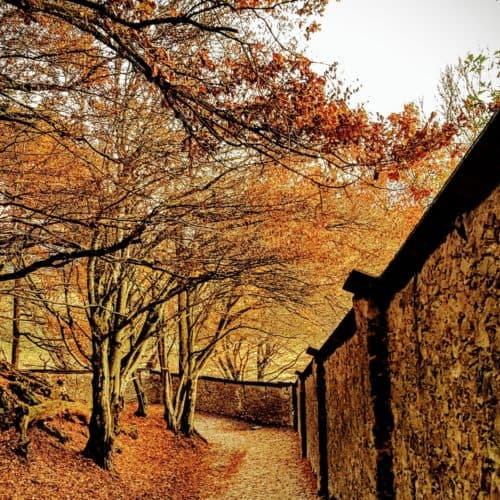 Spaziergang und Wanderweg durch den Tierpark Rosegg in Kärnten. Kinderwagentaugliches Ausflugsziel in der Nähe von Velden am Wörthersee