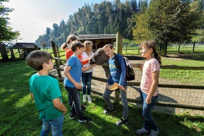 Saisonstart Tierpark Rosegg – Nähe Wörthersee, Kärnten