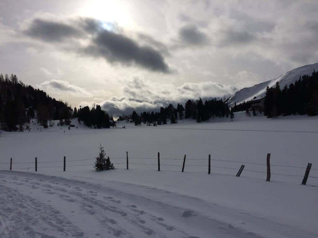 Winter Turracher Höhe Landschaft mit Schnee am Abend bei Urlaub in Österreich, Kärnten