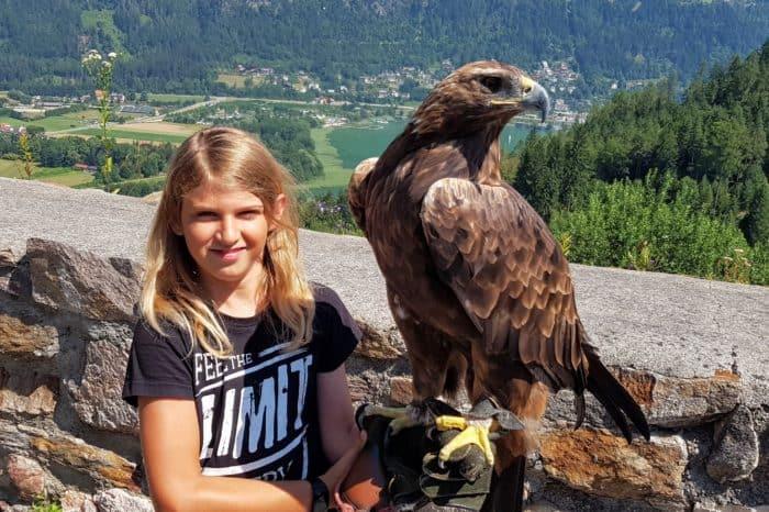 Geschenksidee: Foto-Gutschein mit Greifvogel der Adlerarena Landskron