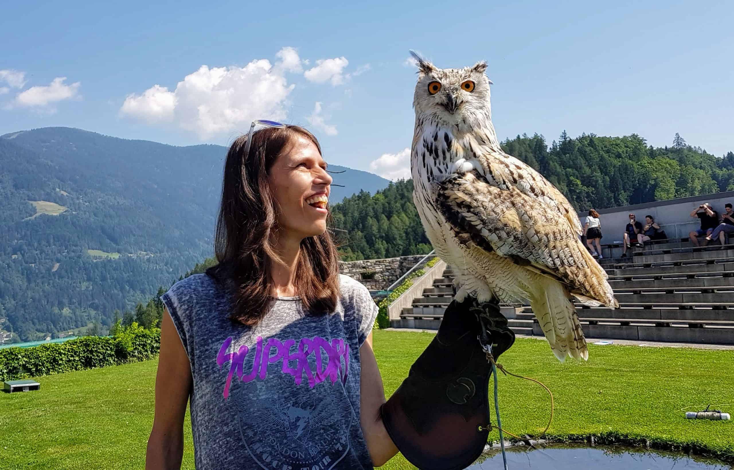 Geschenksidee Foto mit Sibirischer Uhu oder Adler in der Adlerarena Landskron Kärnten Villach - Österreich