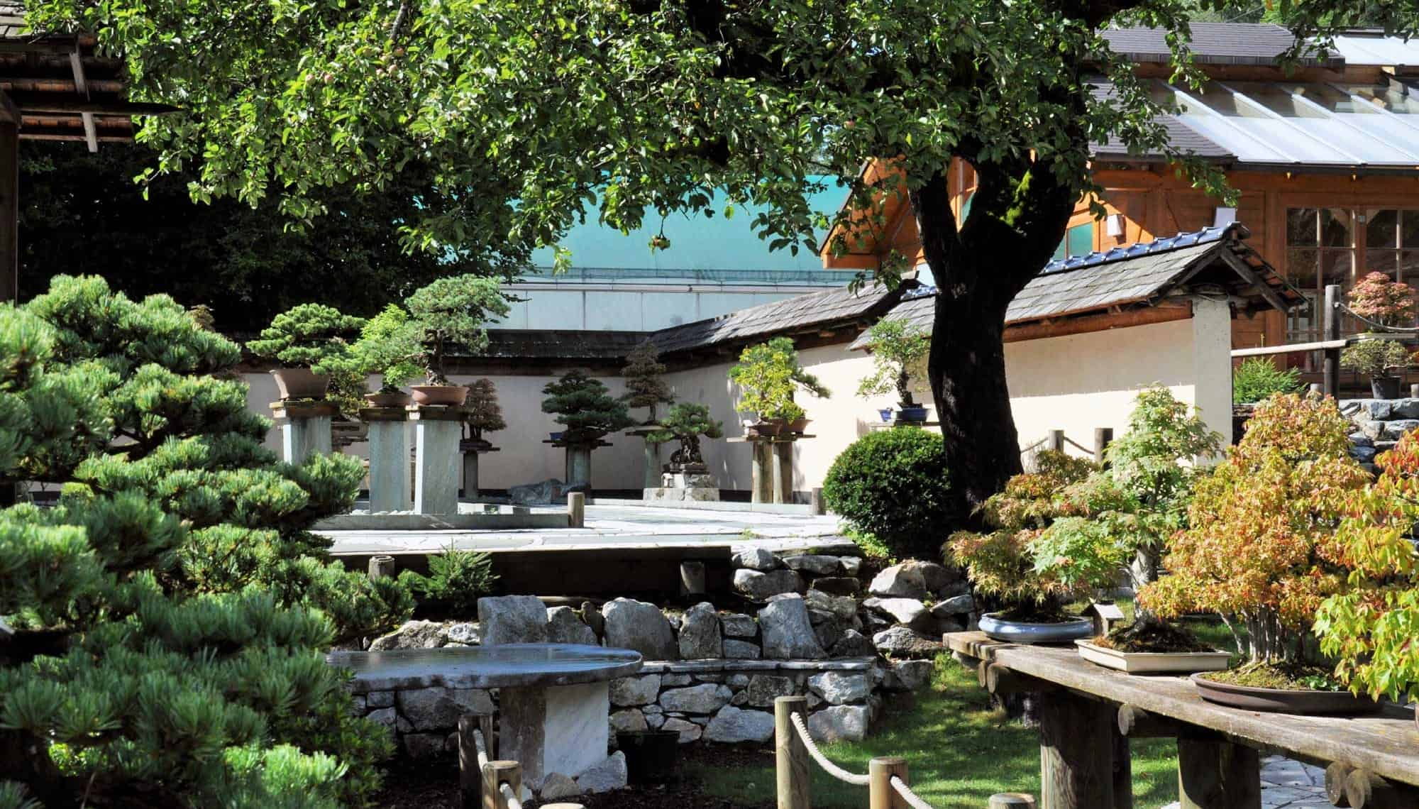 Ausflug ins Bonsaimuseum in Seeboden am Millstätter See