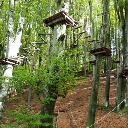 Familienausflüge Villach - Ossiacher See: Im Kletterwald in Ossiach mit Klettertouren und Flying Fox für die ganze Familie. Sehenswürdigkeiten Österreich.