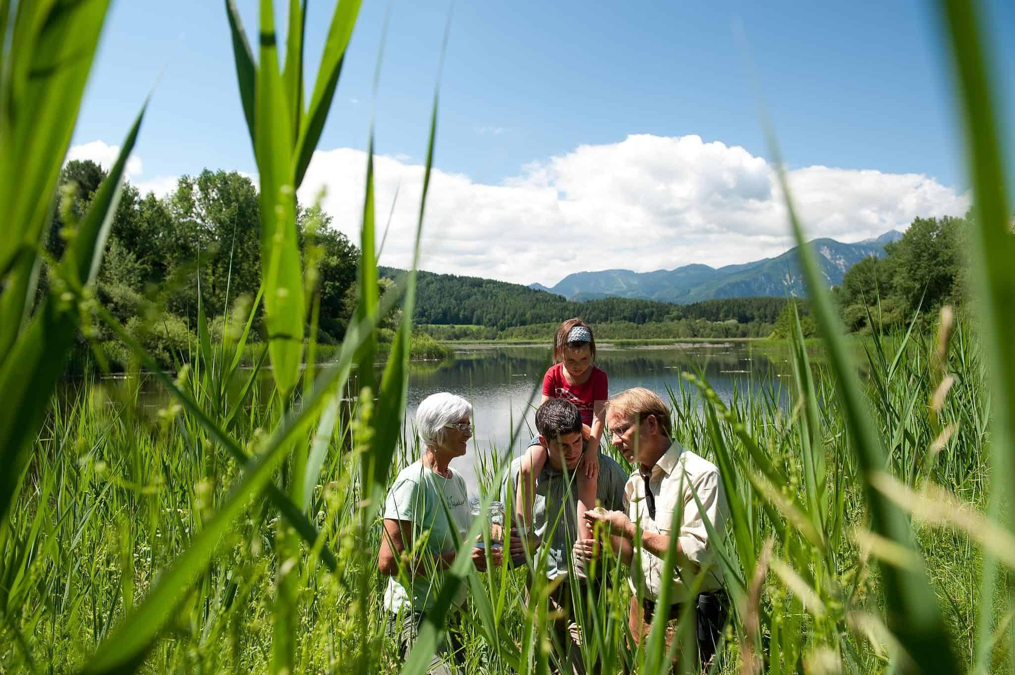 Familie mit Kind bei Führung und Expedition im Slabatnigmoor in Kärnten, Urlaubsregion Klopeinersee in Österreich.