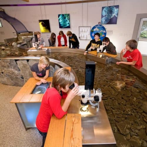 Kinder im Besucherzentrum Mallnitz beim Forschen und Entdecken. Familienfreundliches Ausflugsziel in Kärnten in der Nationalparkregion Hohe Tauern.