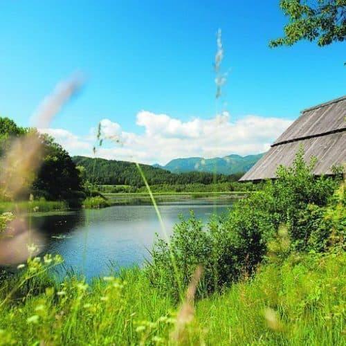 Slabatnigmoor bei Wanderung in der Urlaubsregion Klopeinersee in Kärnten. Naturschutzgebiet in Österreich.