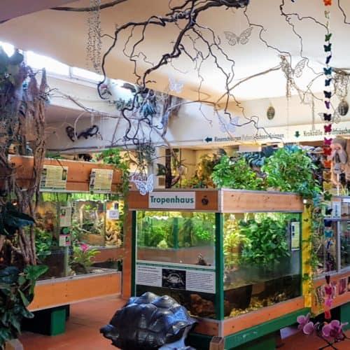 Reptilienzoo Happ Tropenhaus - Im Winter geöffnetes Ausflugsziel in Klagenfurt am Wörthersee in Kärnten - Urlaubsland Österreich