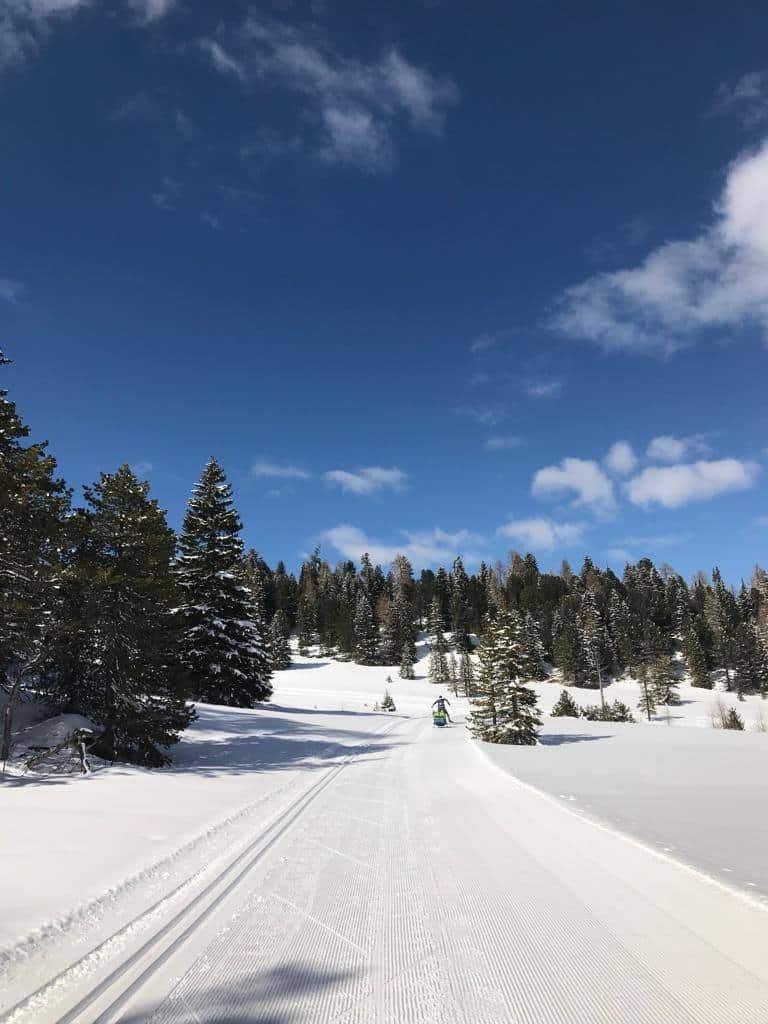 Langlauf & Skating Loipen auf der Turracher Höhe in Österreich
