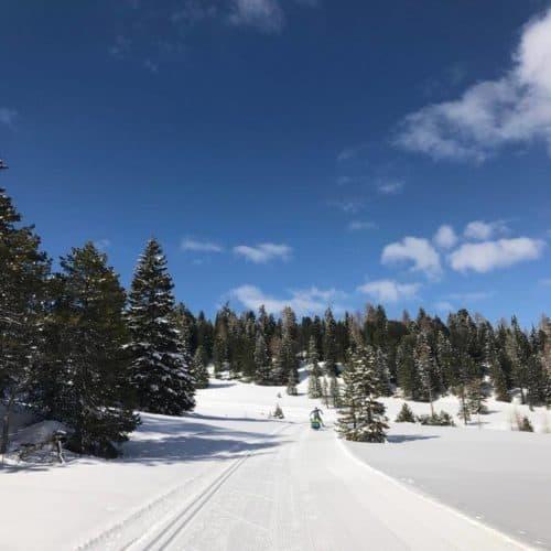 Langlauf- & Skating-Loipen auf der Turracher Höhe - Urlaubsort zwischen Steiermark & Kärnten in Österreich