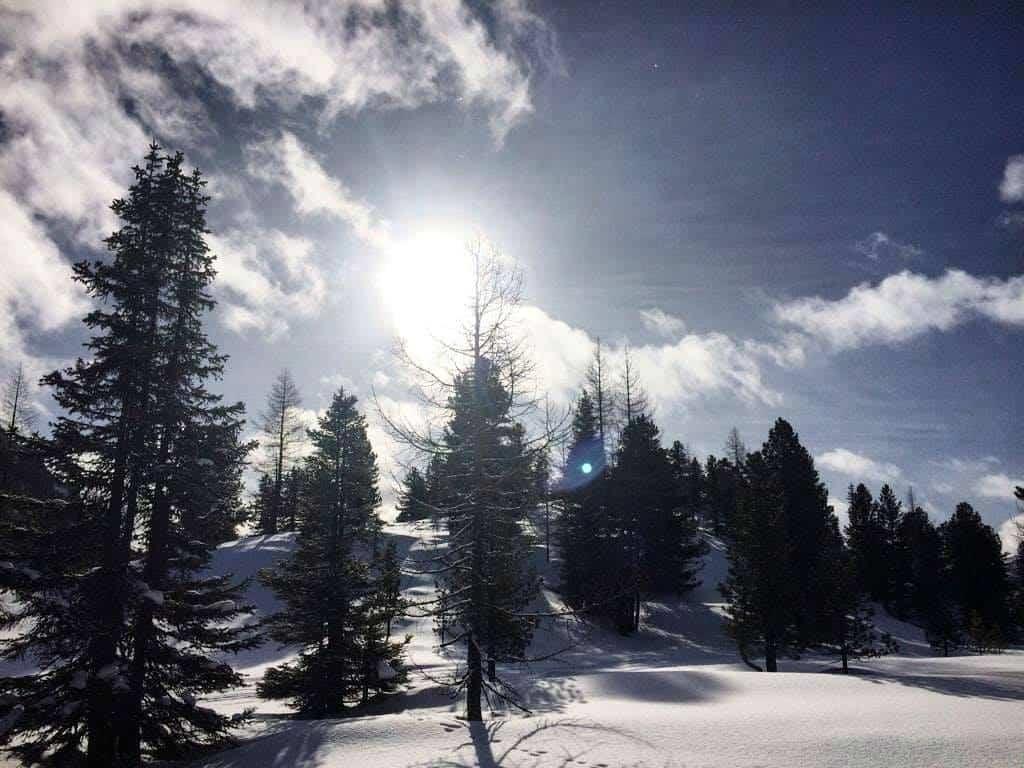 Winterlandschaft bei Schneeschuhwanderung auf der Turracher Höhe - Urlaubsort in Kärnten & Steiermark in Österreich