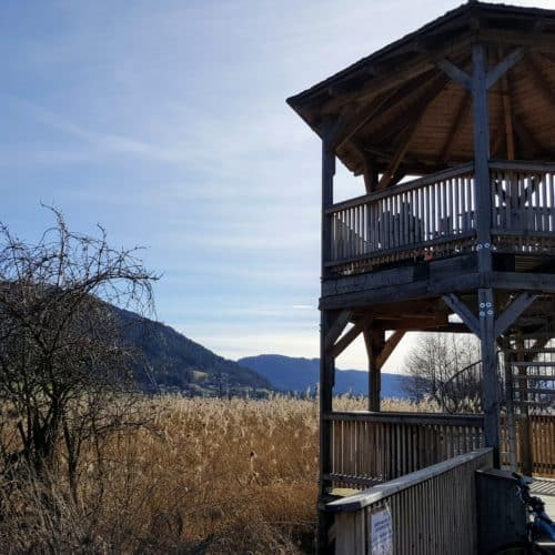 Familienwanderung entlang Bleistätter Moor - Slow Trail in Urlaubsregion Villach am Ossiacher See