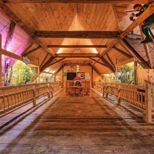 Pilzmuseum Ausflugsziel für Familien in Treffen bei Villach