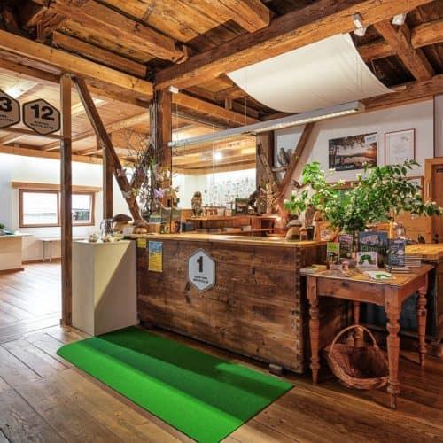 Ausflugstipp Pilzmuseum in Treffen bei Villach in Kärnten