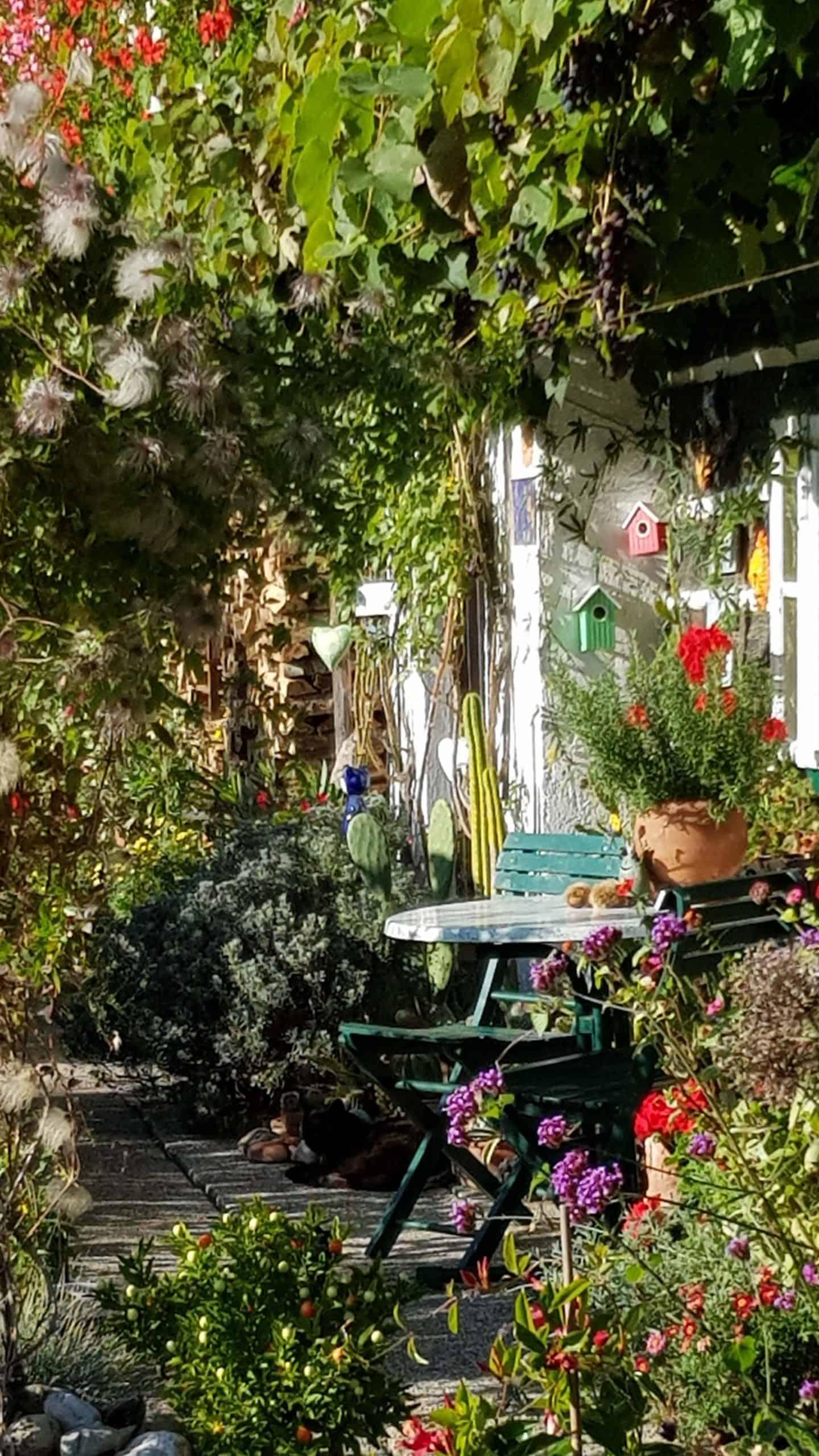 Garten, Katzen und altes Haus entlang des Slow Trails Bleistätter Moor am Ossiacher See - Urlaubsregion Villach in Kärnten, Österreich