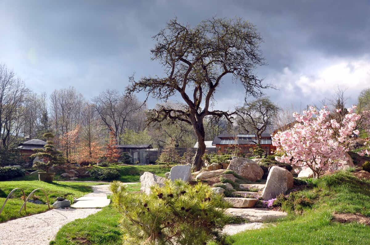 Bonsaimuseum im Frühling geöffnet - Ausflugsziel in Kärnten