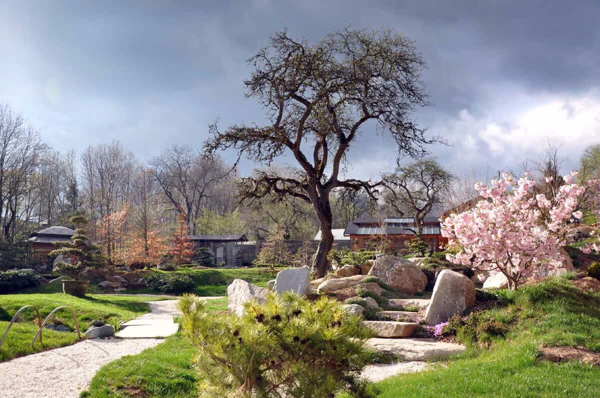 Ausflugsziel Bonsaimuseum in Seeboden am Millstätter See im Frühling