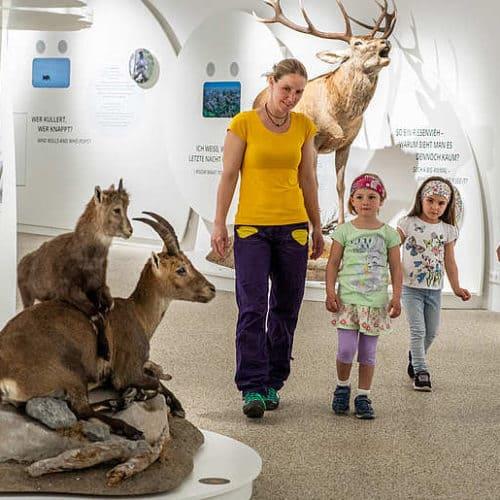 Familie mit Kindern bei Ausflug im Nationalpark Besucherzentrum Mallnitz in der Urlaubsregion Hohe Tauern Kärnten