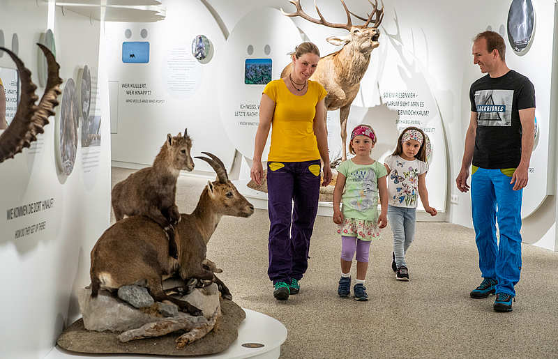 Familie in Nationalpark Besucherzentrum Mallnitz Hohe Tauern